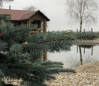 Агроусадьба «Лебедево»